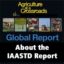 About the IAASTD Report