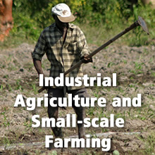 Industrial Agriculture and Small-scale Farming